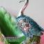 ของขวัญวันขึ้นบ้านใหม่ ตุ๊กตารูปนกยูงเรซิ่นตกแต่งบ้านประดับด้วยพลอยสีฟ้า thumbnail 5