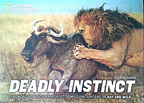 Deadly Instinct