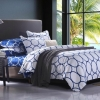 ผ้าปูที่นอน BlueWhite -5