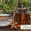 ชาใบเส้นดาวอินคาอบแห้ง (Sacha Inchi Tea)