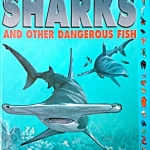 Sharks and Other Dangerous Fish