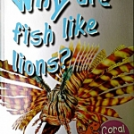 First Q&A: Why Are Fish Like Lions?