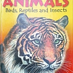 Animals: Birds, Reptiles and Insects