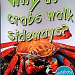 First Q&A: Why Do Crabs Walk Sideways?