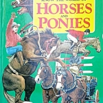 Know the World of Horses and Ponies