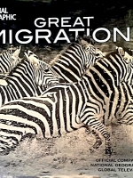 Great Migrations: Epic Animal Journeys
