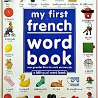 Non-English Books