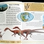 Dinosaurs Carnivores thumbnail 4