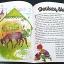 Fairy Tales thumbnail 5