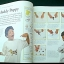 The Really Big Book of Amazing Things to Make and Do thumbnail 4