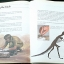 The Complete Book of Dinosaurs thumbnail 6