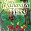 The Enchanted Wood thumbnail 1