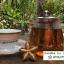 ชาใบดาวอินคาอบแห้งแบบซองชง (Instant Sacha Inchi Tea) thumbnail 2