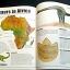 The Illustrated Dinosaur Encyclopedia thumbnail 9