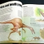 The Illustrated Dinosaur Encyclopedia thumbnail 5