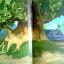 Colour Case thumbnail 5