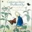 Caterpillar Butterflies thumbnail 1