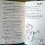 Nina Fairy Ballerina thumbnail 16