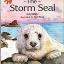 The Storm Seal thumbnail 1