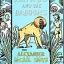Akimbo & the Baboons thumbnail 1