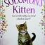 Solomon's Kitten thumbnail 1
