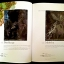 Brian Froud's Goblins 10 1/2 Anniversary Edition thumbnail 2