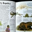 Book of Long Long Ago thumbnail 5