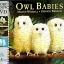 Owl Babies thumbnail 1