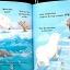 The Polar Bear Paddle thumbnail 2